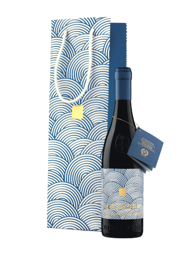 Amarone della Valpolicella DOCG Classico 85° - Domini Veneti